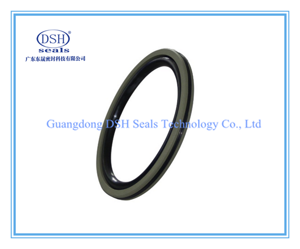 Piston Seals, X-ring, Oring ,PTFE Compact Seals