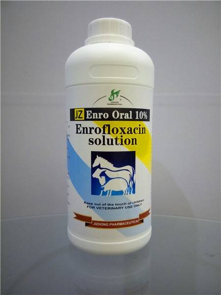 Enrofloxacin Injection ( Enrofloxacin Solution )