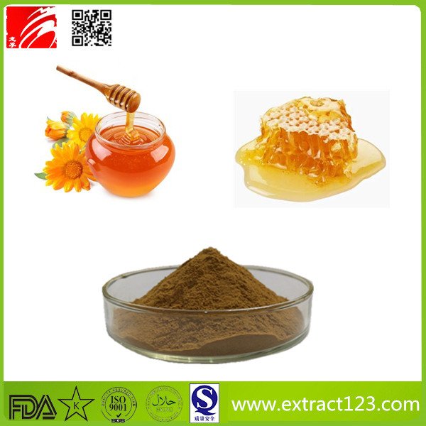 High Quality Propolis Extract Powder