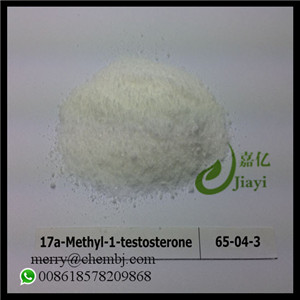 17a-Methyl-1-testosterone 65-04-3