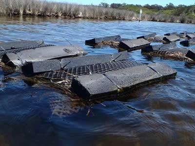 Float oyster bag