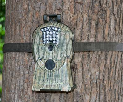 The Best Value Hunting Trail Scouting Game Wildlife Camera with 10MP Image and 720P HD Videos
