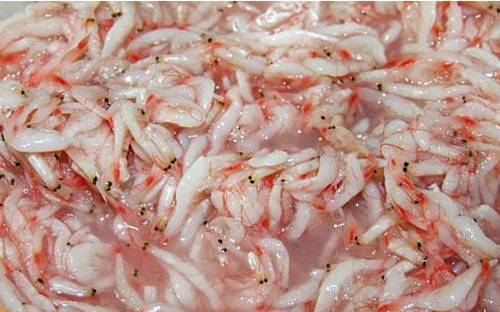 Salted Baby Shrimp