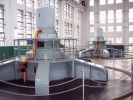 TL series vertical synchronous motors
