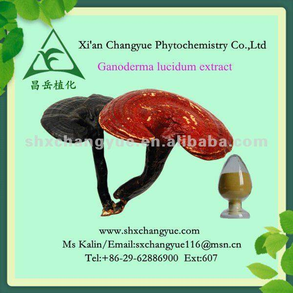 pure natural organic Reishi mushroom plant Extract powder-20% ganoderan UV