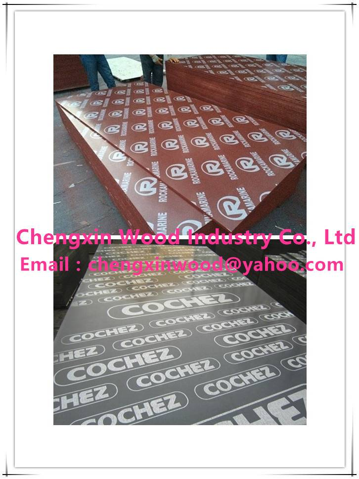 Film Faced Plywood Shandong Manufacturer