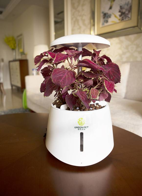 Automatic led light flower plant pot indoor