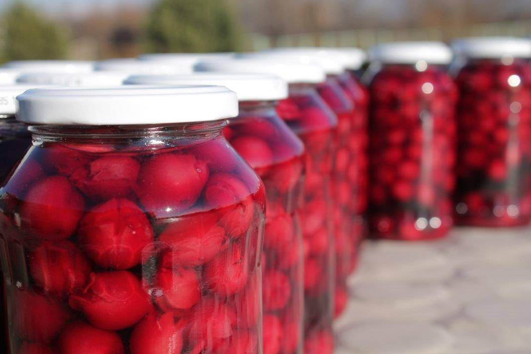 preserved sour cherry