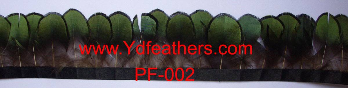 feather trimming-002