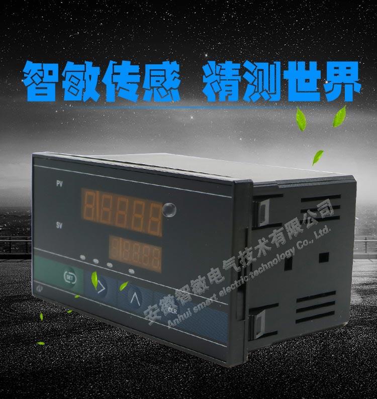 Weighing display instrument