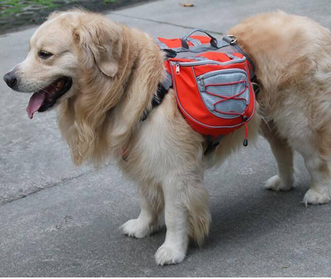 Since outdoor pet dog pack bag backpack