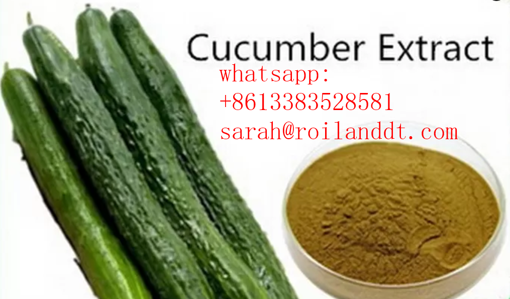 Odorless Cucumber Extract Powder for Skin Care Product