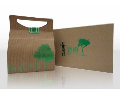 Hand Carry Paper Box with Green Foil Stamping