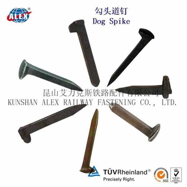 Q235 plain oiled Railroad Dog Spike for track construction