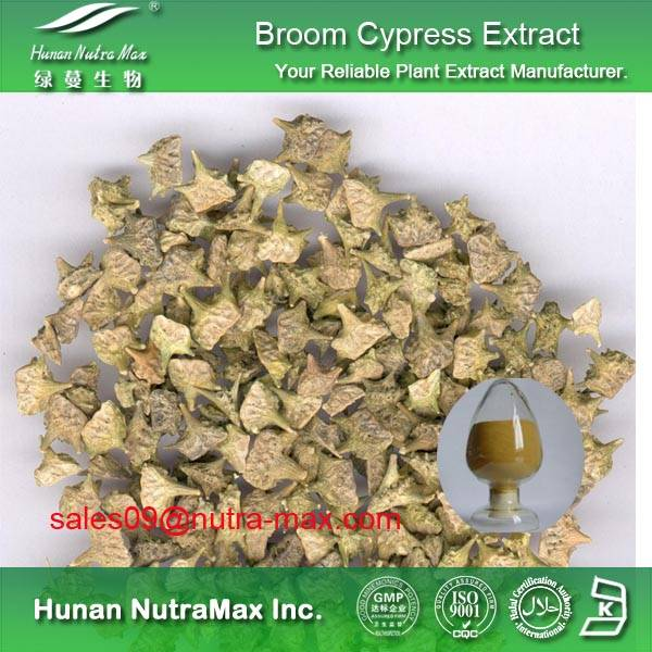 broom cypress extract