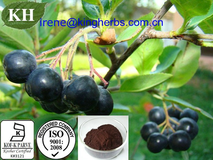 Chokeberry Extract;Vitamin C 5% By CP2000, anthocyanidin 1% ~ 25% By UV.