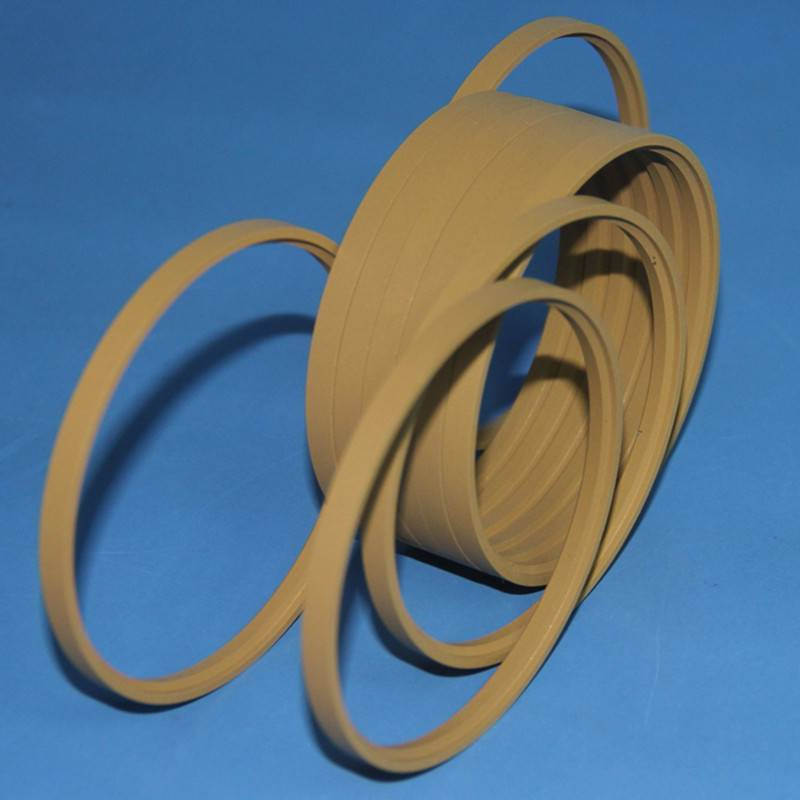 PTFE Rod Step Seals