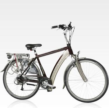 aluminum alloy electric bike