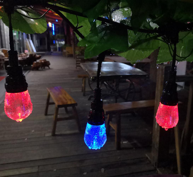 Waterproof Color Changing led string lights outdoor for Party ,Garden
