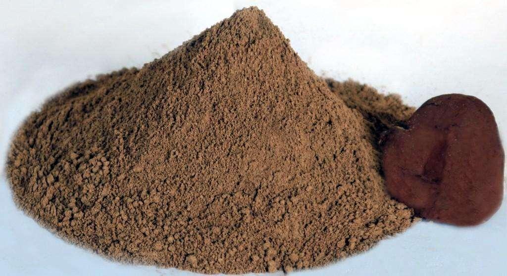 Ganoderma Polysaccharides