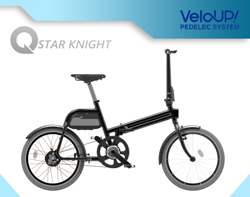 Big Power High Speed Electric Foldable Bicycle