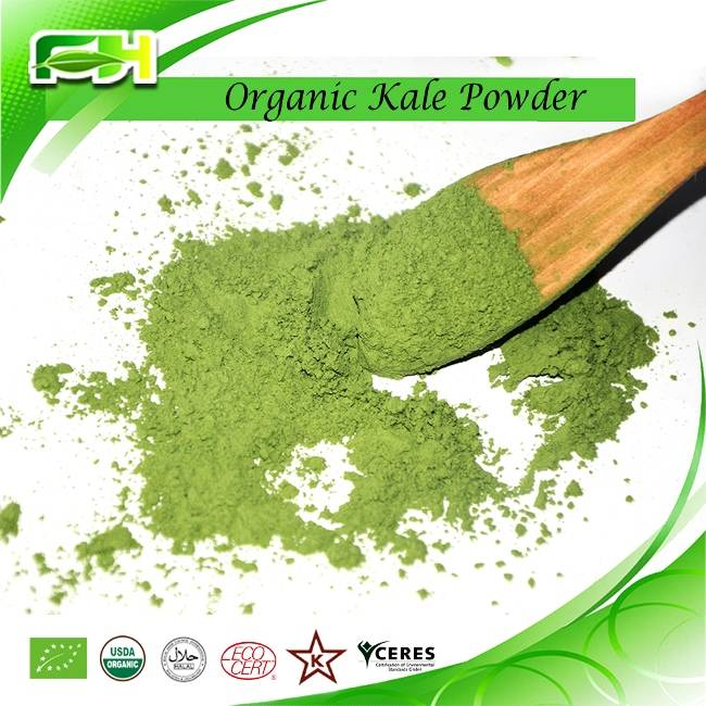 Kale Extract. Organic kale Powder
