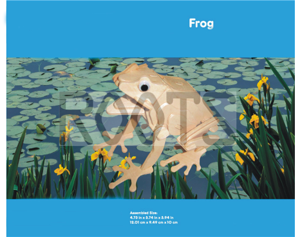Frog-3D wooden puzzles, wooden construction kit,3d wooden models, 3d puzzle