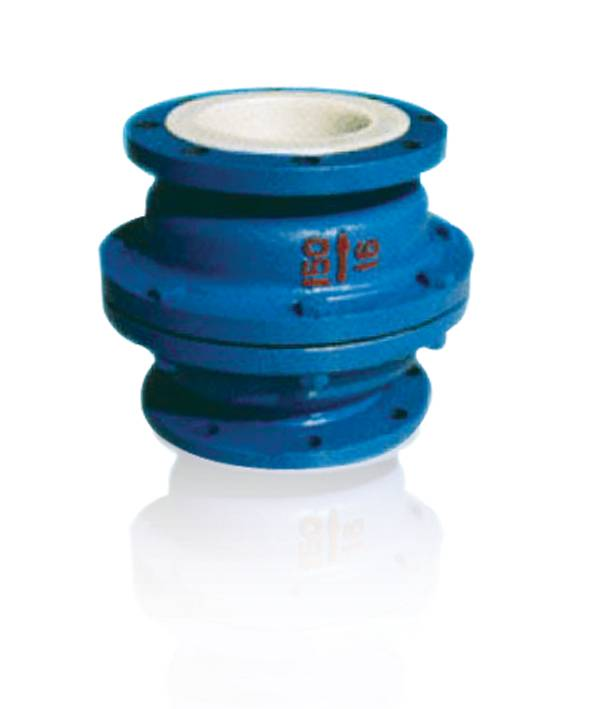 Professional China Supplier of PTFE Lined Check Valve (H42)
