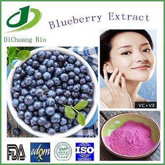 100% natural Blueberry Extract Anthocyanidin