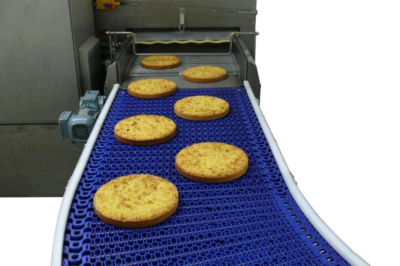 Plastlink food grade conveyor