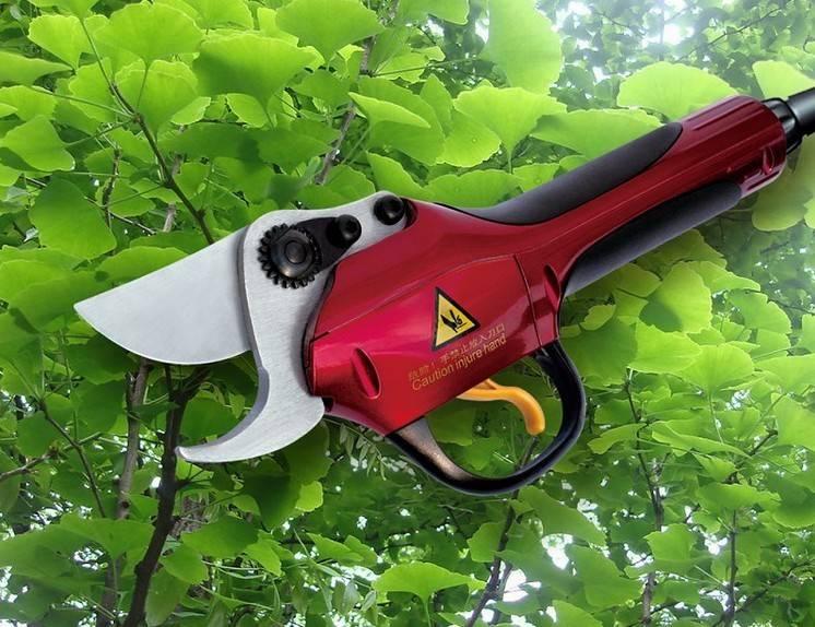 Electric Pruning Shear