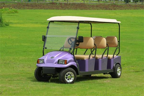 Famous Falcon Brand 6 seat Electric Utility Vehicle - Exclusive Agent