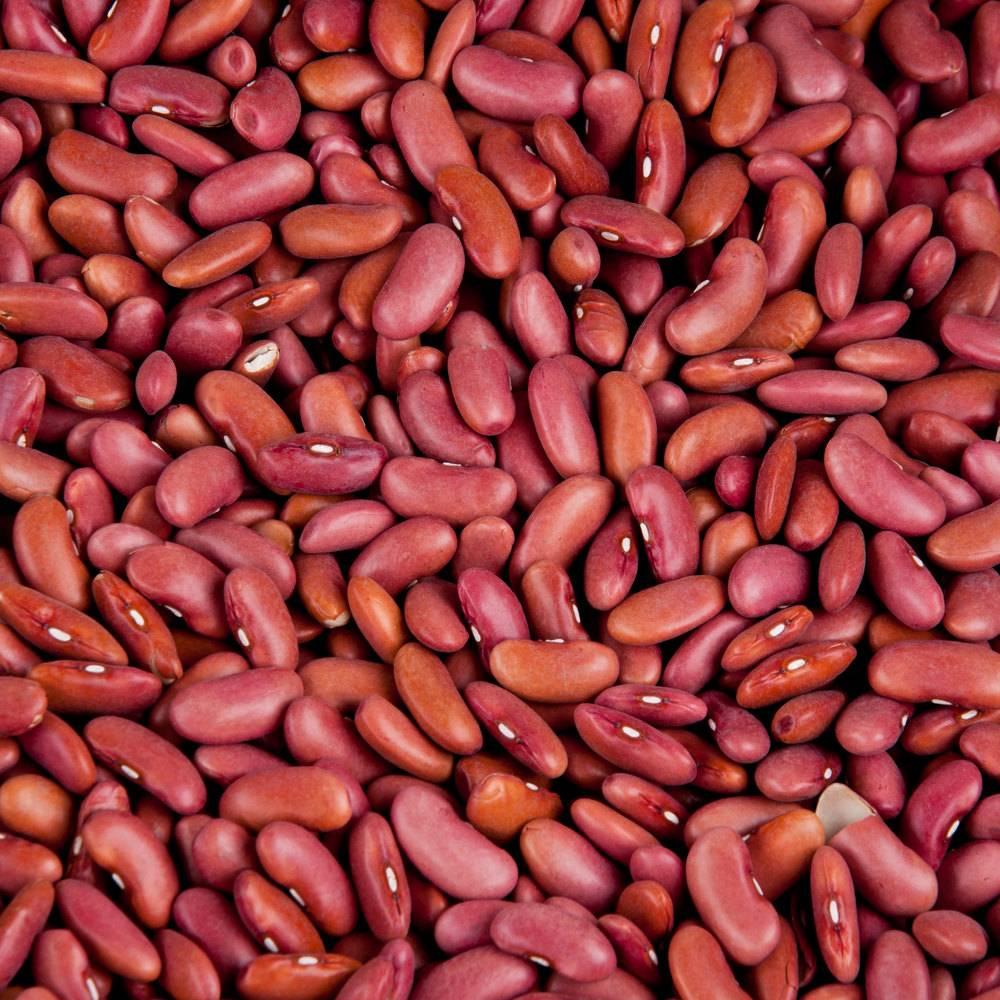 Kenyan red Kidney Beans