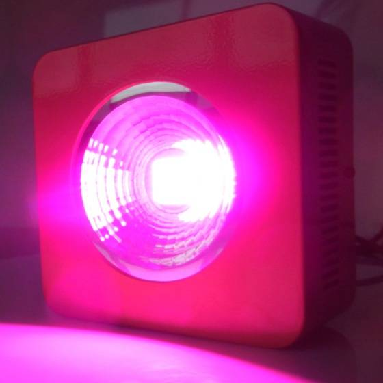 COB grow led light Red Blue LED Grow Light for Hydroponics Garden led light grow Light 3 Year Warran