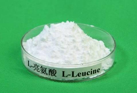 manufacturer high quality L-leucine CAS 61-90-5
