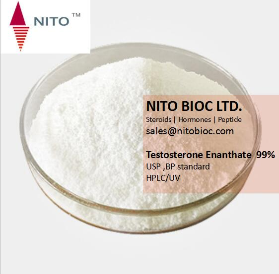 Nito Hot Sell Anabolic Steroid Powder Testosterone Enanthate for Muscle Building