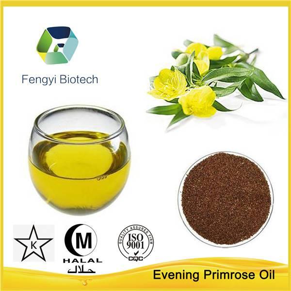 Evening Primrose oil in bulk--GLA9-10%