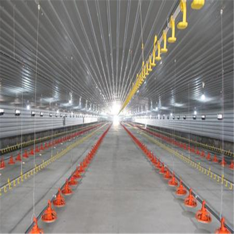 Large poultry farm steel structure frame chicken pen/Broiler coop