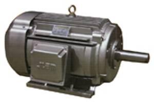 NEMA High-Efficiency Three Phase Induction Motor