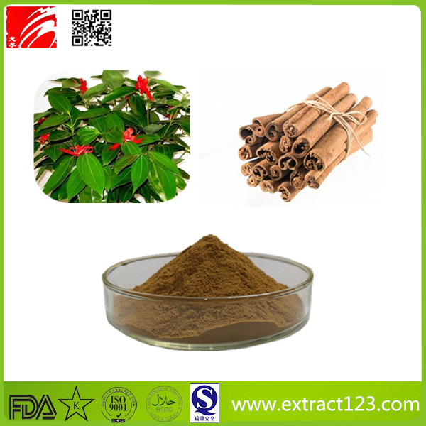 High Quality Cassia Extract Powder