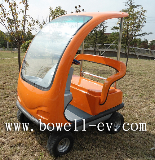 Mini 2 seat electric golf car