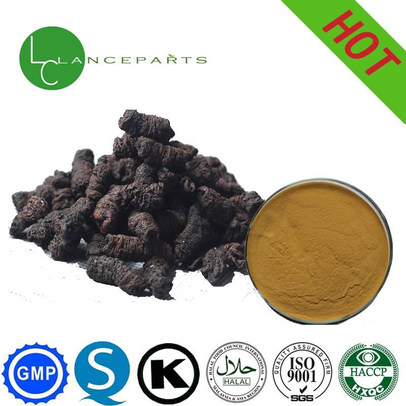 Medicinal morinda root extract
