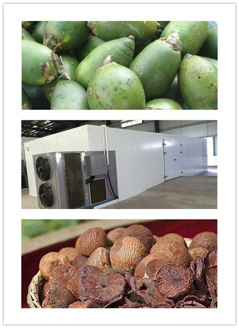 CE ISO Certificate copeland compressor machine for drying betel nut,areca nut dry machine. heat pump