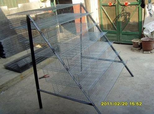 Quail Cages for Sale in Philippines