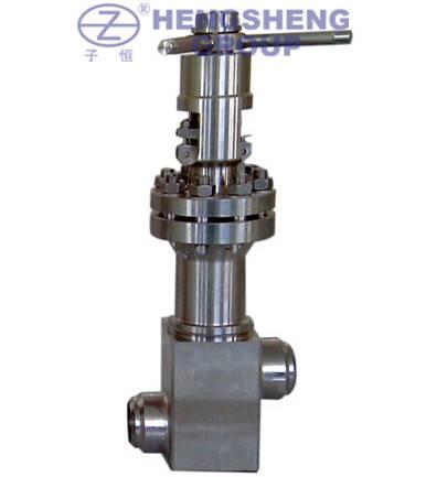 Stainless Steel Bellow Seal Globe Valve