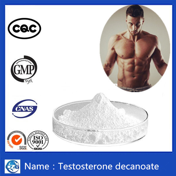 98% Purity Muscle Building White Powder Testosterone Decanoate