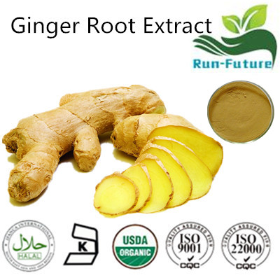 Ginger Root Extract,Pure Ginger root Extract , Factory Supply Hot Sale Ginger Extract