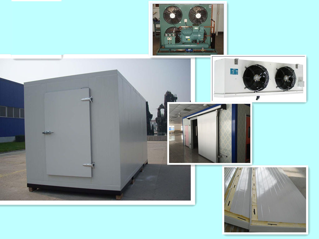 Hot Sale Cold Room Price For Storage Fruit And Vegetable