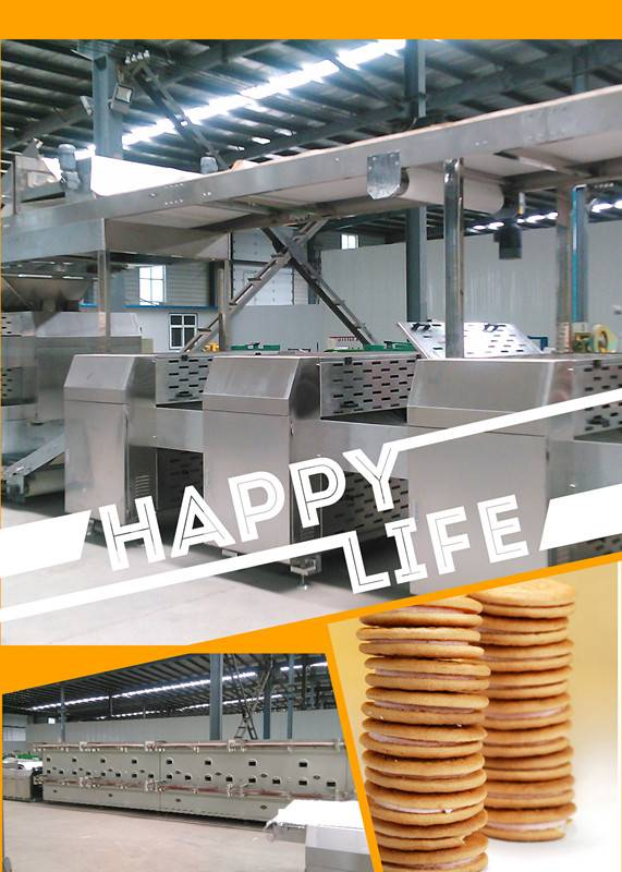 food factory supplier hard and soft biscuit machine