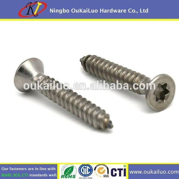 Pin-in-Torx Security Self Tapping Screws